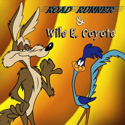 Baby looney tunes roadrunner - photo#11